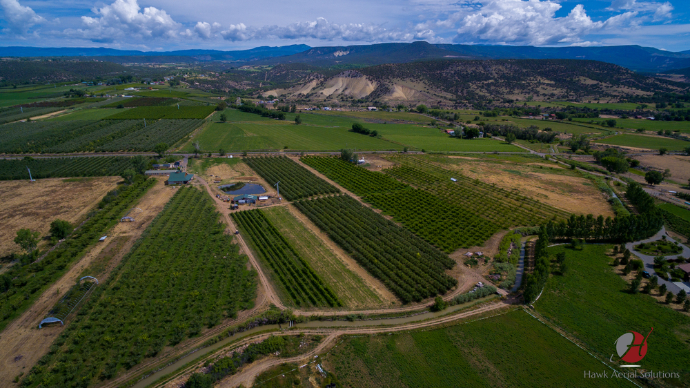 Mesa Winds Farm wm-1-3.jpg