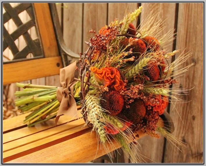 Harvest  Image via: