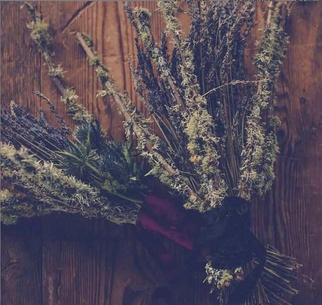 Harvest flowers by Harlow Garland