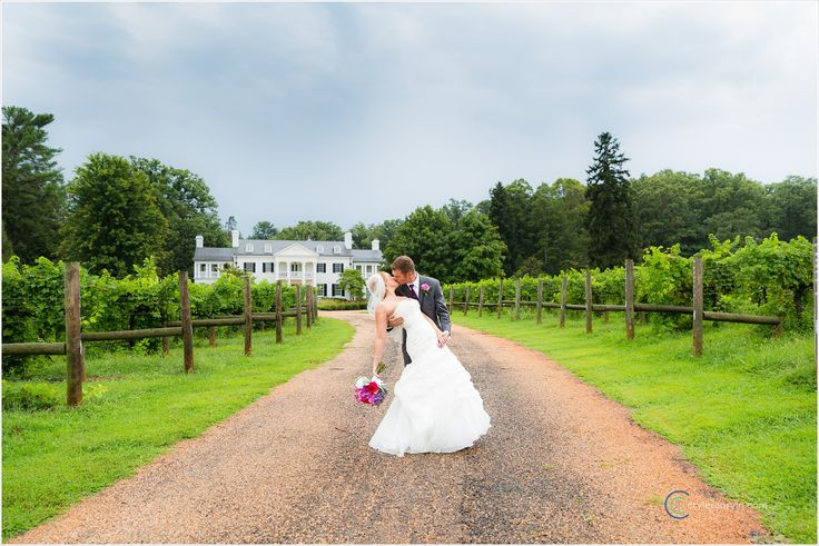 Vineyard Wedding  Image via: