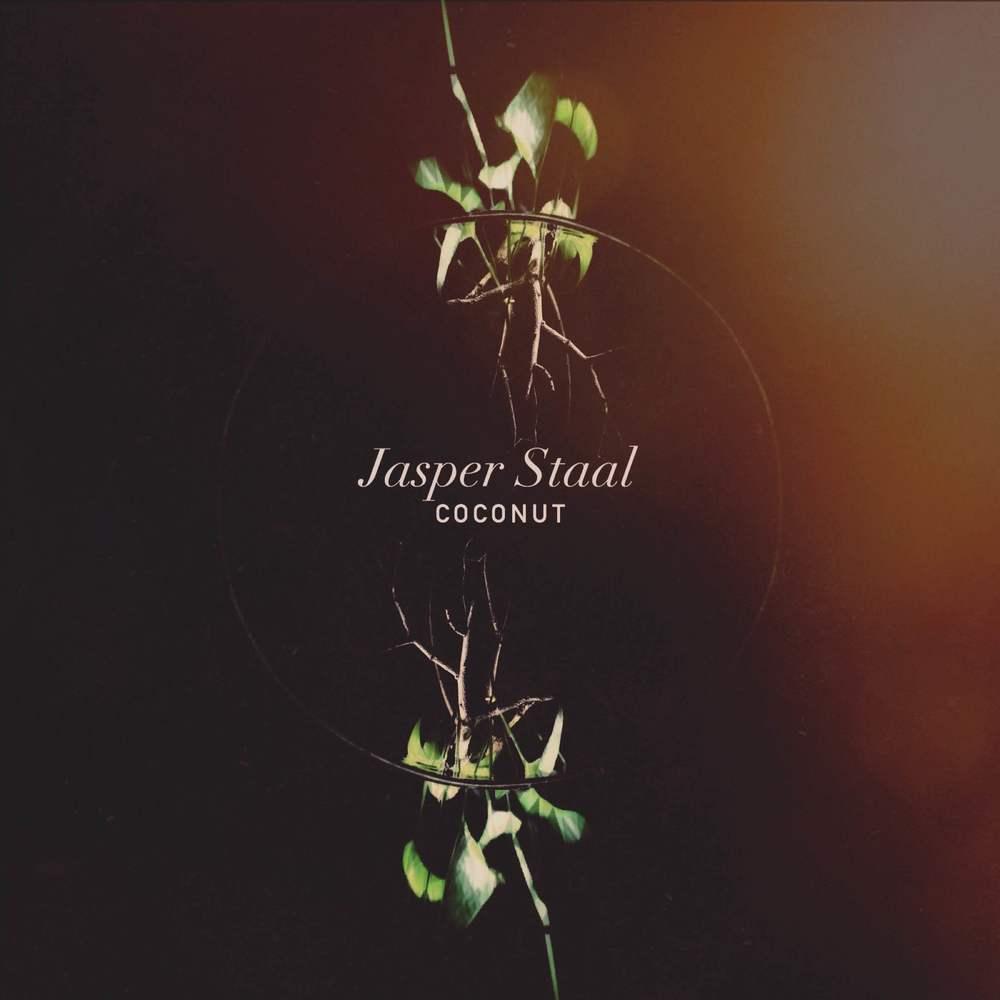 JASER STAAL.JPG