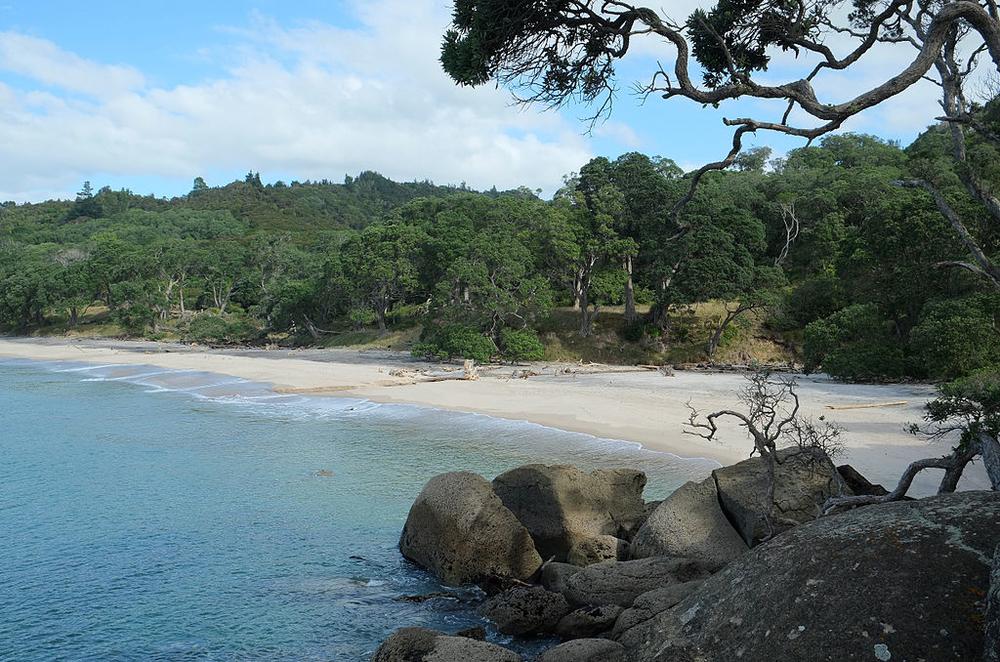Orokawa Bay.jpg