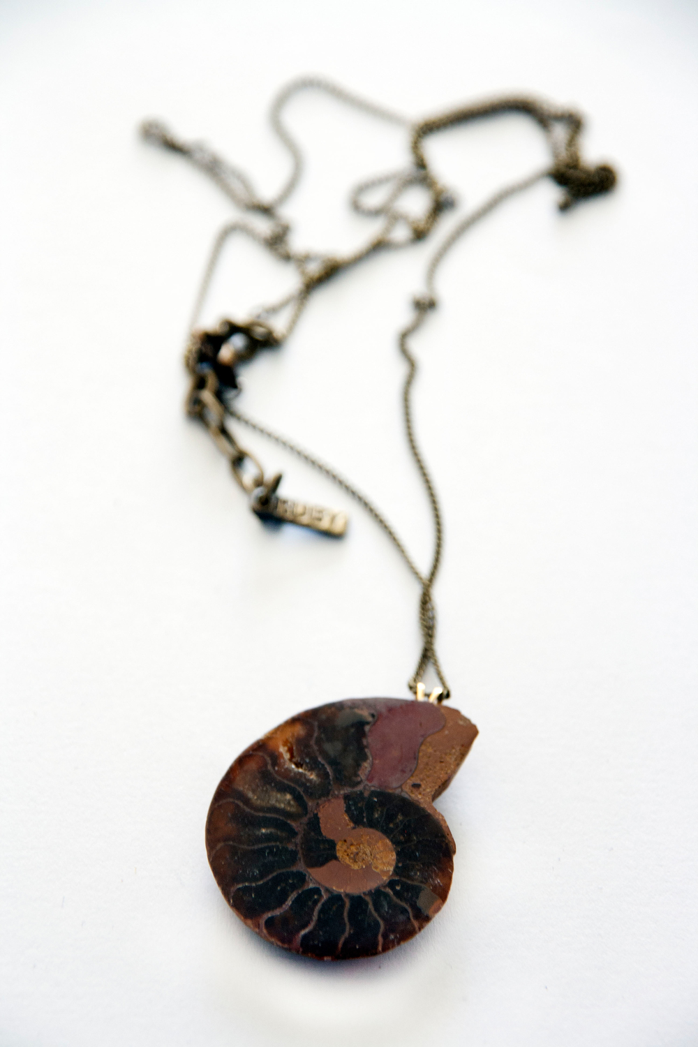 Amonite Fossil Necklace (8101.1).jpg