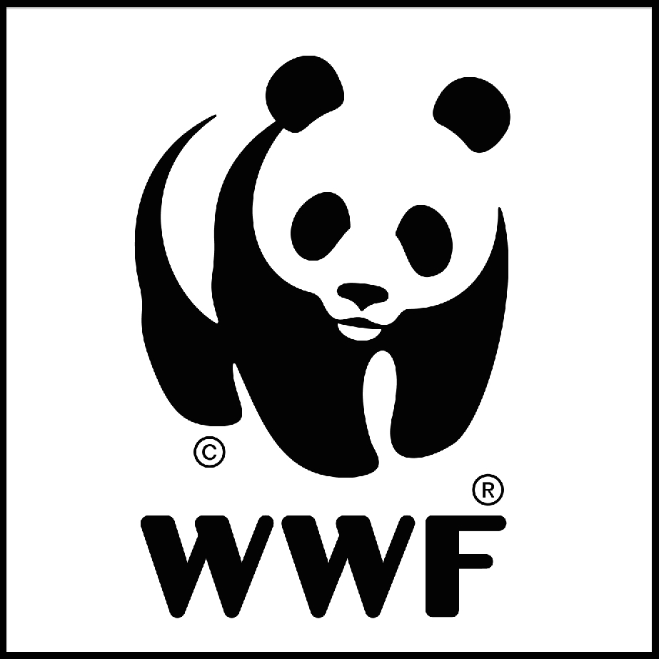 Sarkalaiset ovat toteuttaneet ruokakuvauksia ja juttuja Soppa 365 -sivustolle WWF:n yhteistyökumppanina.