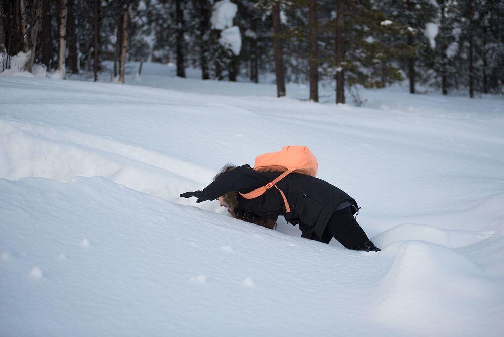 Inarin Kutturassa maantie päättyy ja metsä alkaa. Kuva: Elias Lahtinen