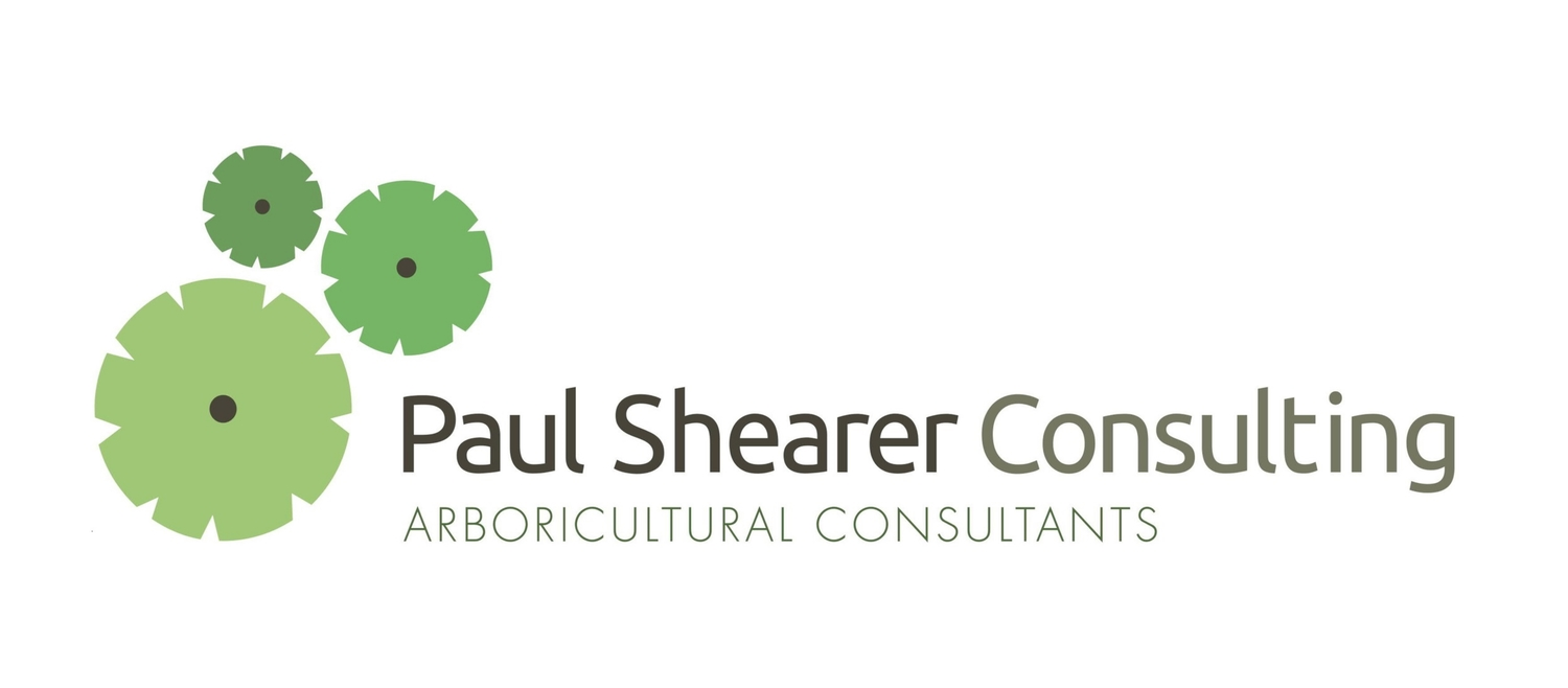 Paul Shearer Consulting