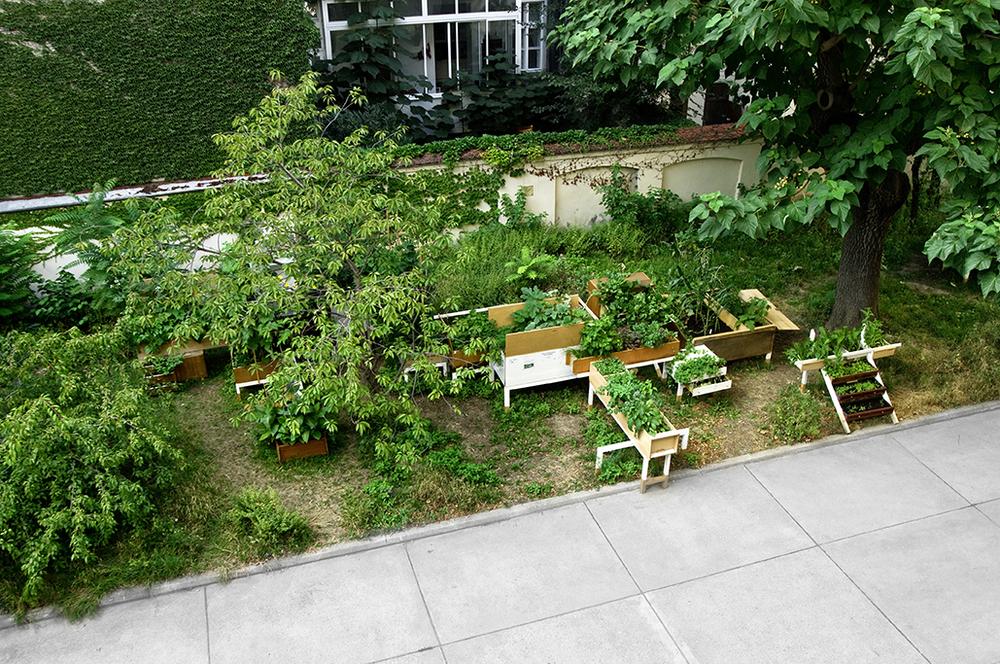 garden04.jpg