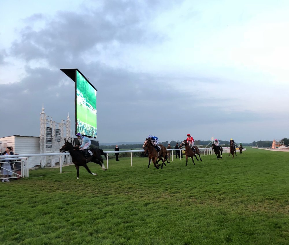 Goodwood Race