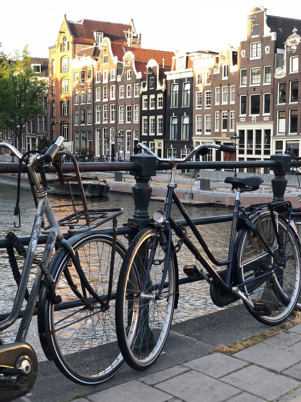 The bikes and the views are what amsterdam is all about.....and the food, and the people!