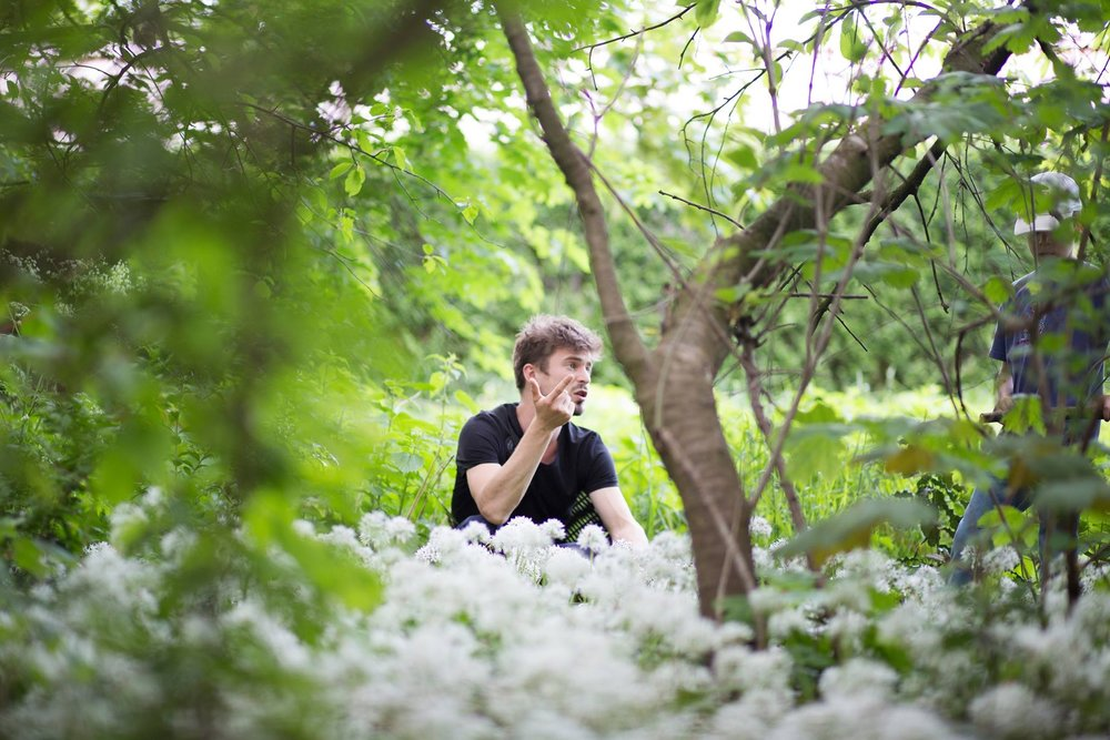 Ben Brumagne van Forest To Plate geeft uitleg over wilde eetbare plant Daslook, foto door Lies Engelen