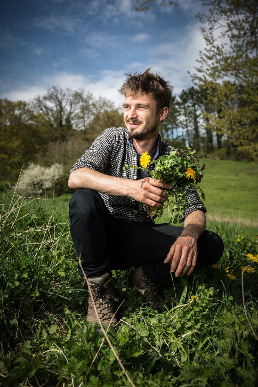 Wilde eetbare plant paardenbloem in handen van Ben Brumagne van Forest To Plate. Foto Francois Van Heel