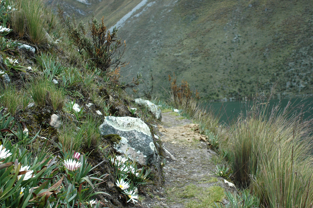 trek Huayhuash