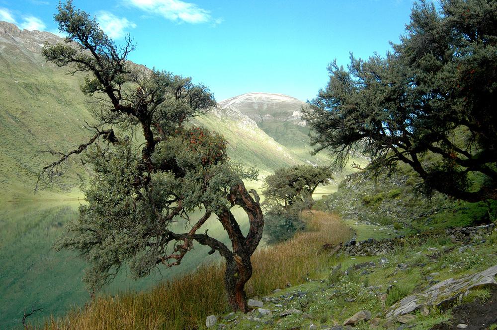trek-huayhuash-20.jpg