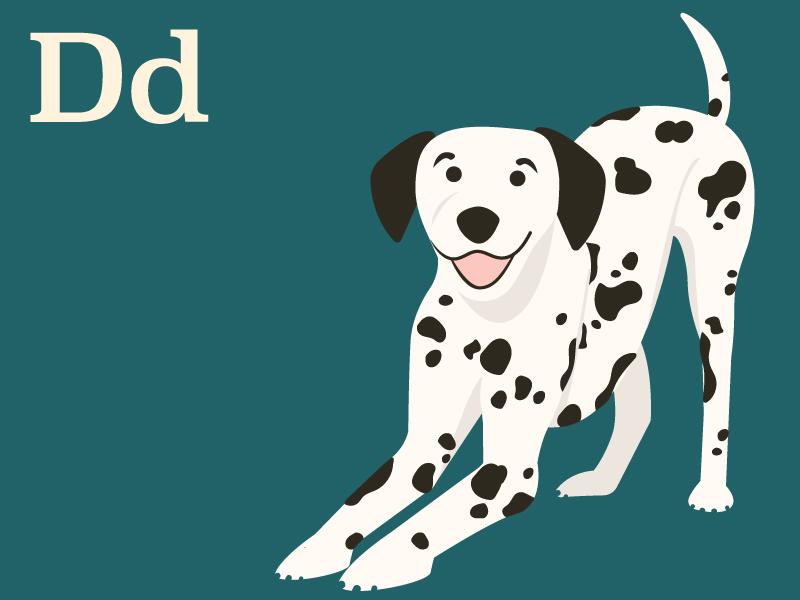 Dog_Dribbble_Dalmatian.jpg