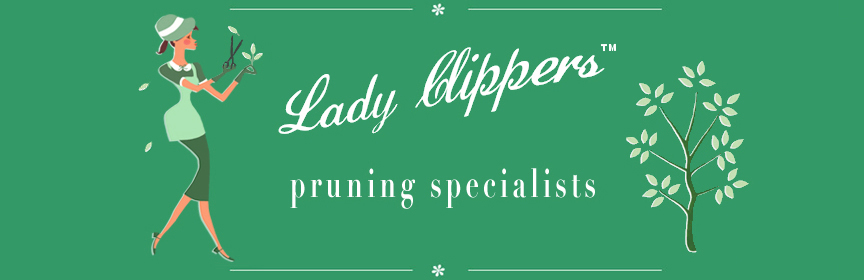 Lady Clippers pruning specialists logo