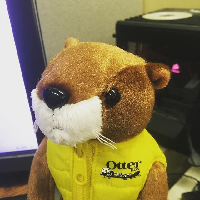 Look who showed up at my office today. Thanks @otterbox