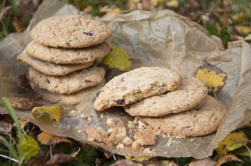 Høstcupcakes. Oppskrift kommer på bloggen på tirsdag. Foto: Julia Edin