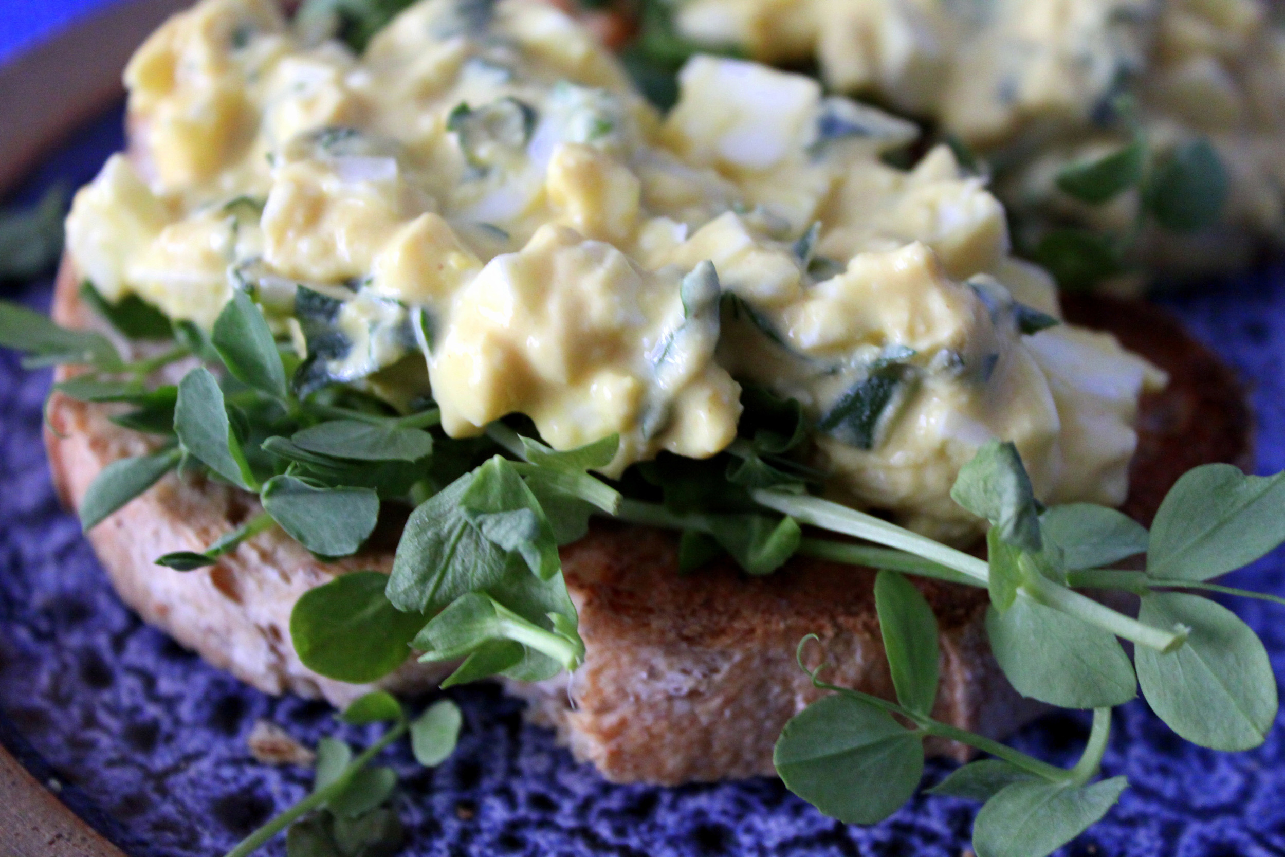 egg salad sprouts