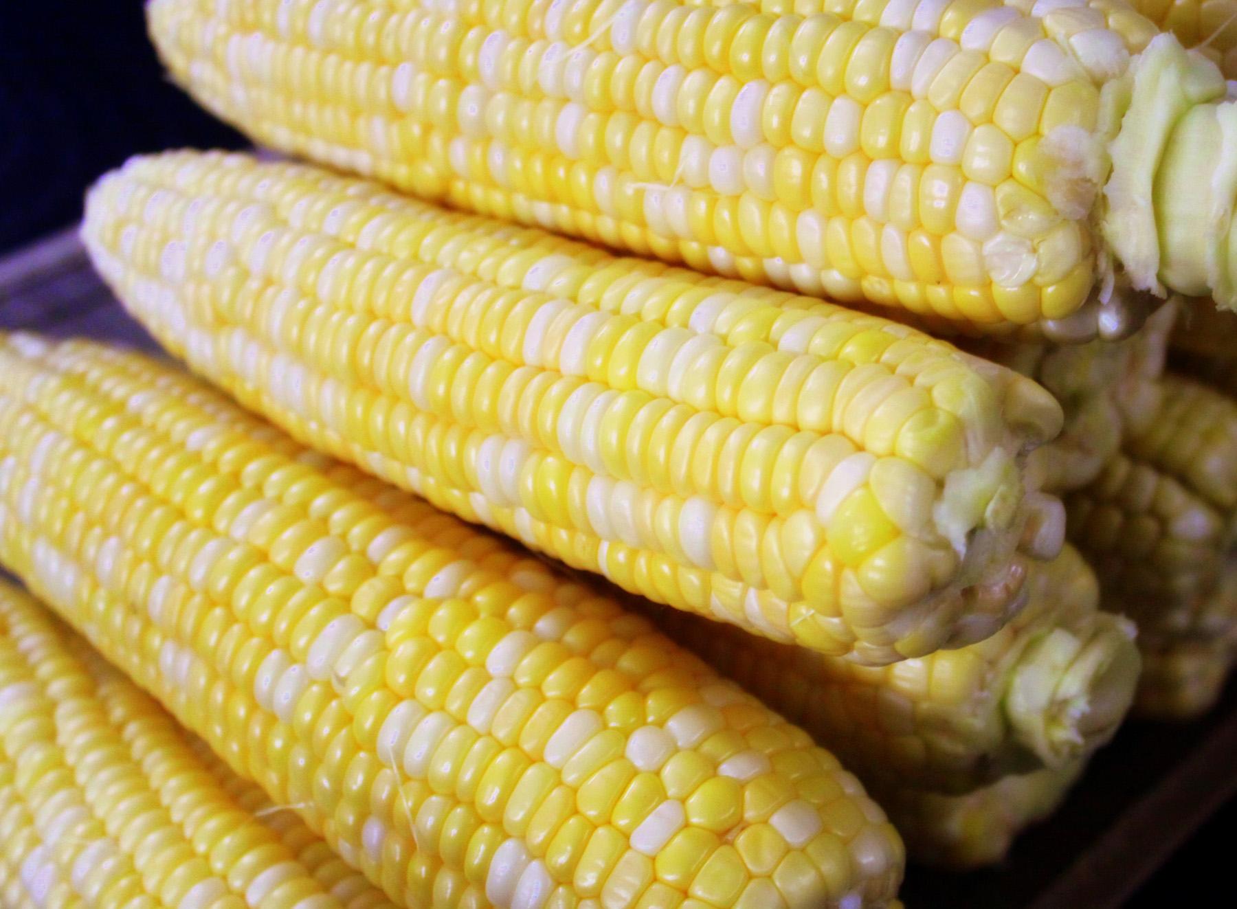 corn6
