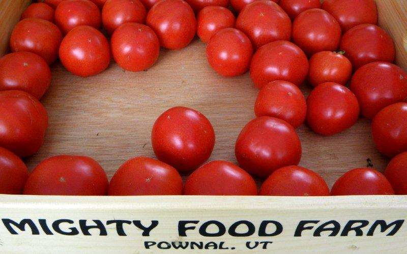 mighty food farm tomatoes