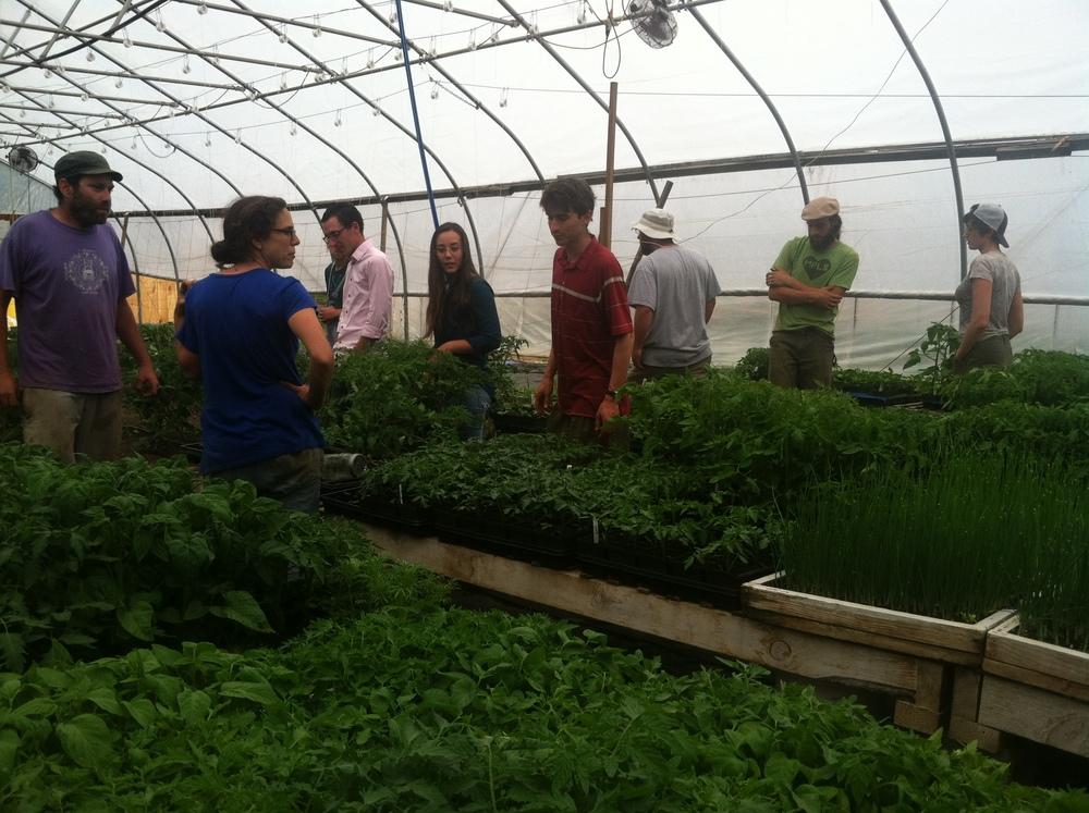 Earthy Sky Time Community Farm