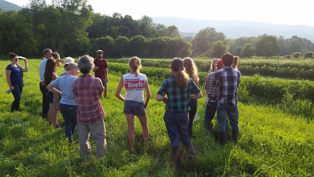 Someday Farm