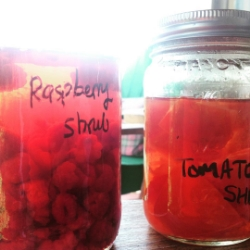 raspberry shrub and tomato shrub