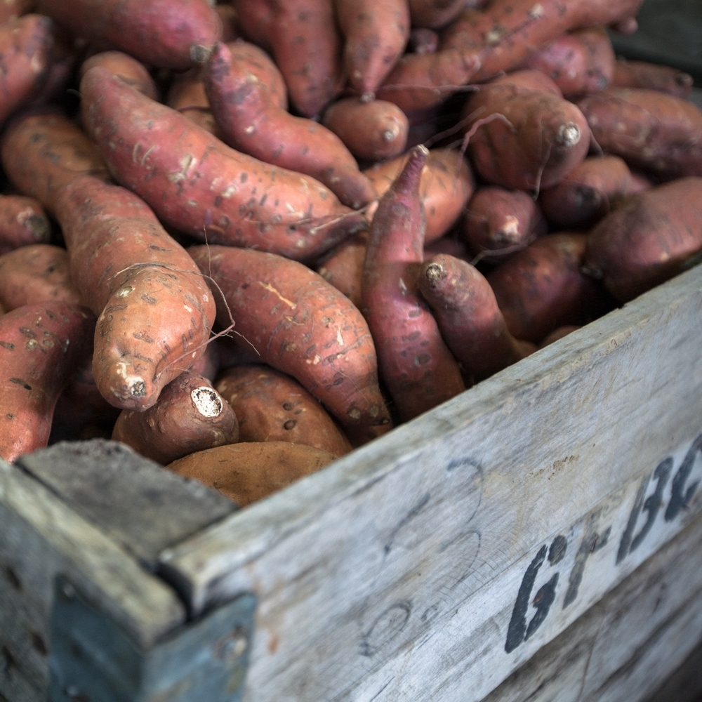 Sweet potatoes from Laughing Child Farm