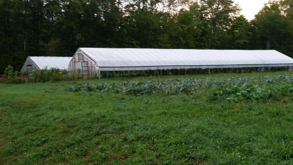 Evening Song Farm