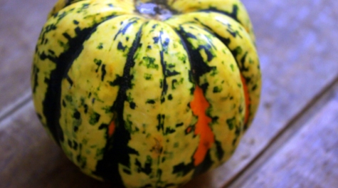 Winter squashes come in several varieties, providing differences in taste and texture. A Carnival Squash, shown above, is a cross between acorn and sweet dumpling squash. Steve Peters/photo