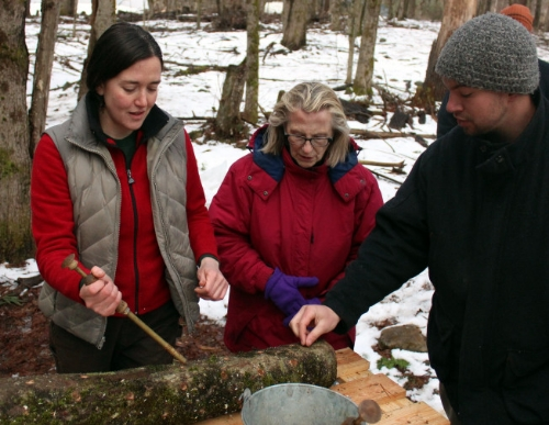 Injecting mushroom spores into a log at Tangled Roots