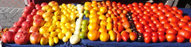 Heirloom Tomatoes. Photo credit Alchemy Gardens