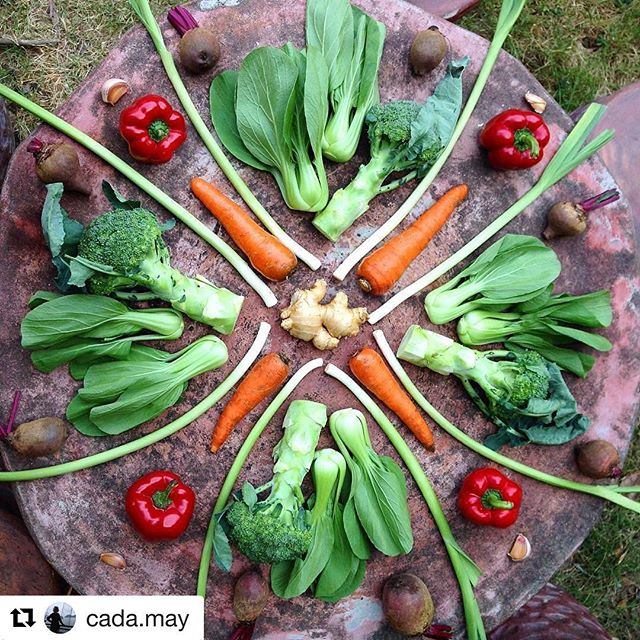 The market is open! Learn about Farm Fresh Connect and how to order here: www.farmfreshconnect.org #rootedinvermont #foodart #repost #playwithyourfood