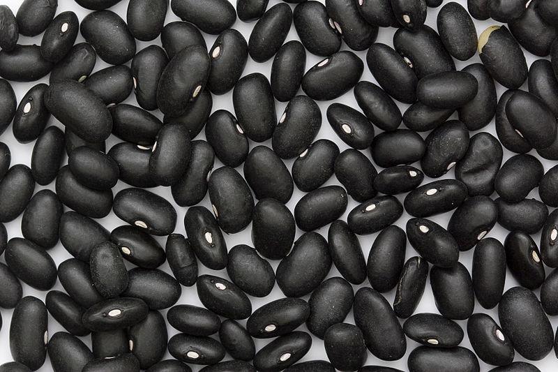 Beans_BlackTurtle.jpg