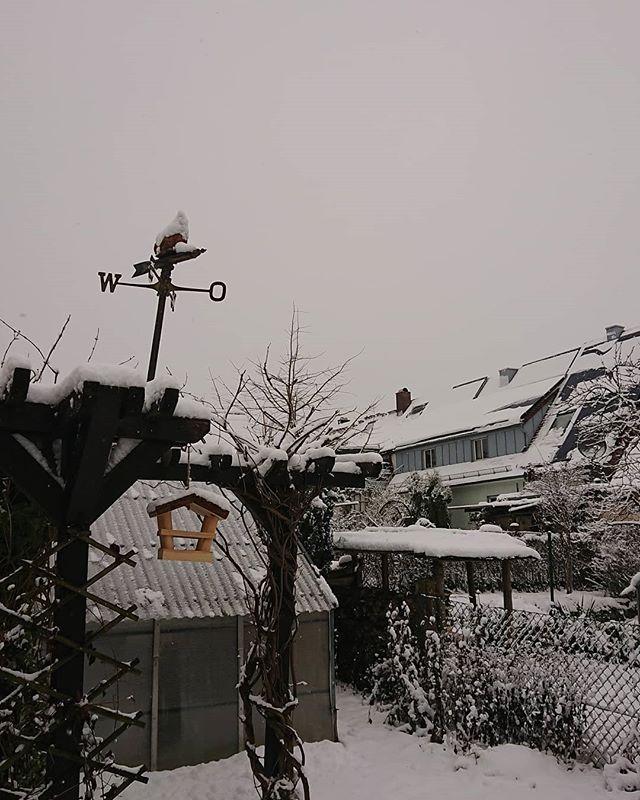 #snowday #pfuhl
