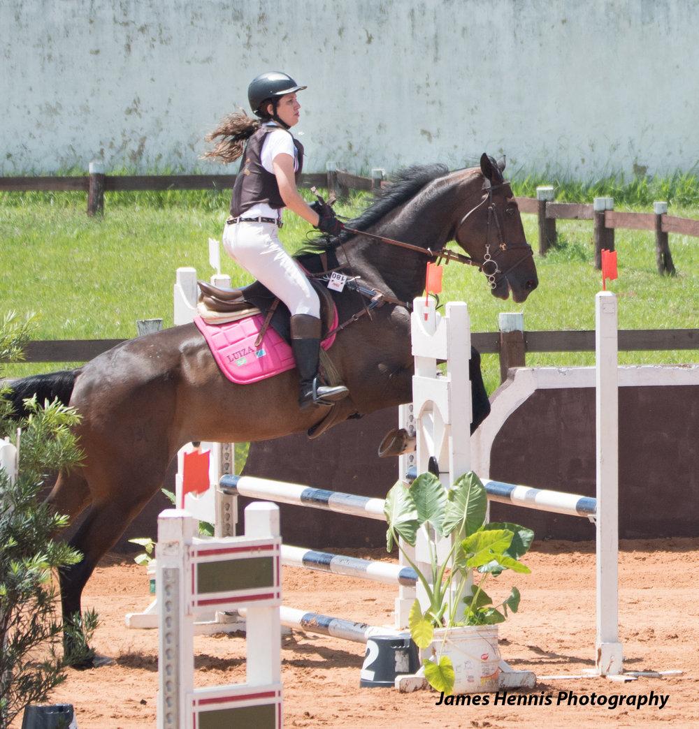 CG-Horse41.jpg