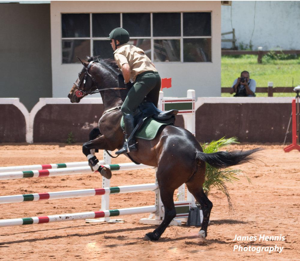 Cg-Horse35.jpg