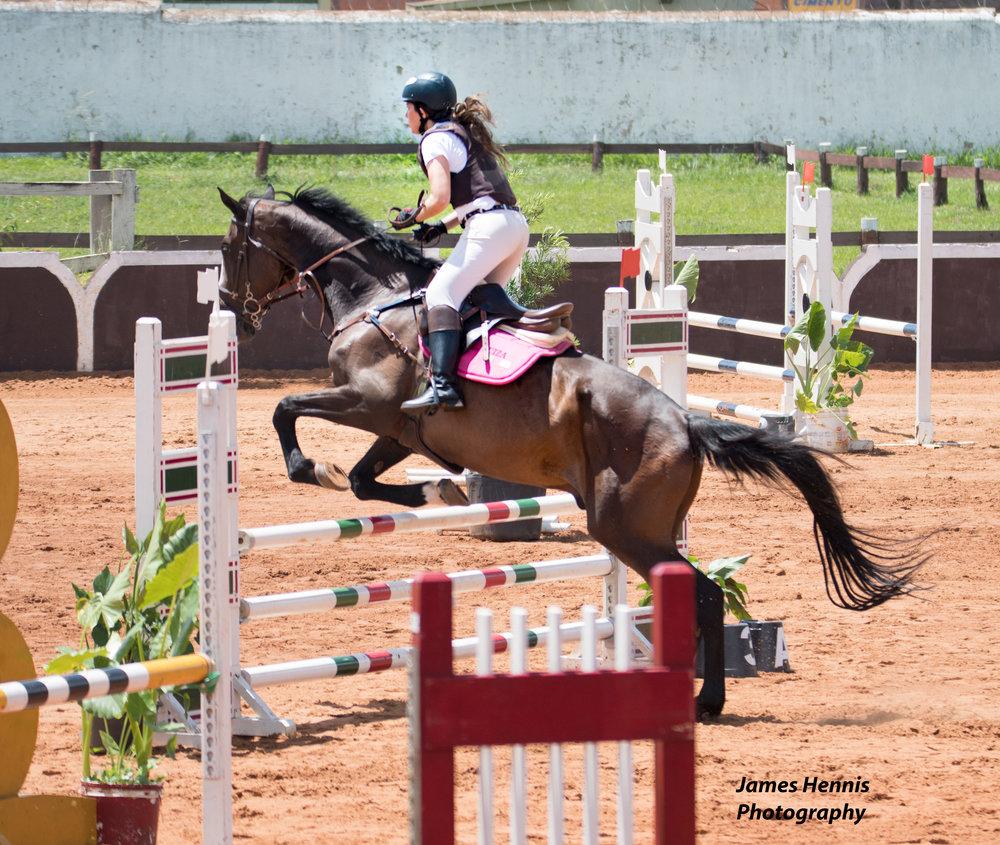 Cg-Horse43.jpg