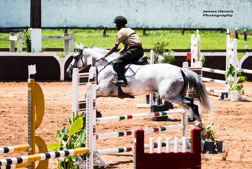 CG-Horse51.jpg