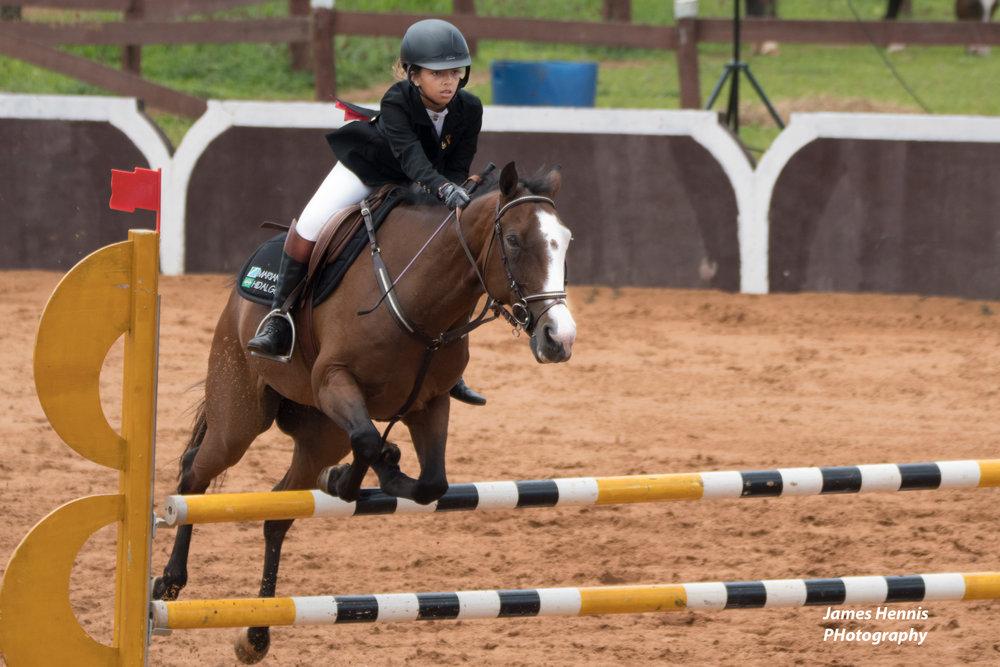 CG-Horse118.jpg