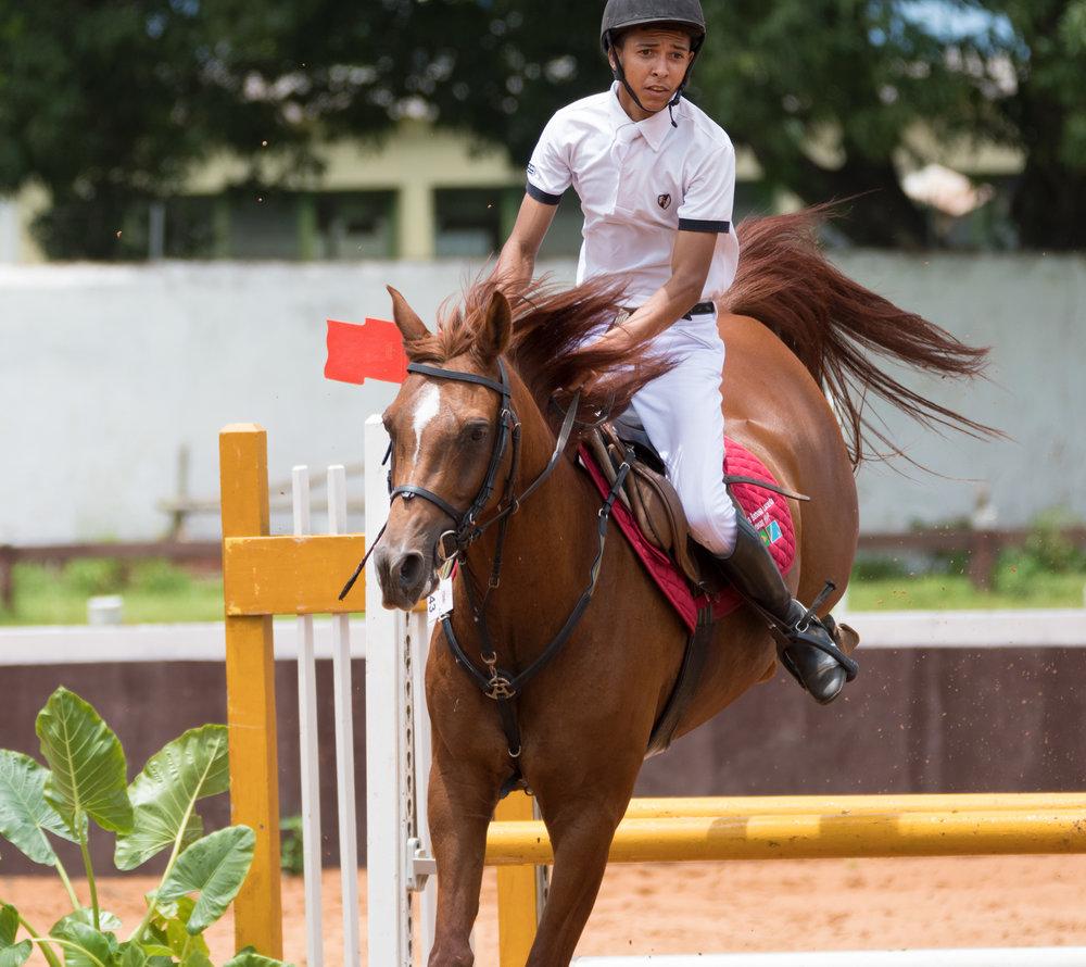 CG-Horse137.jpg