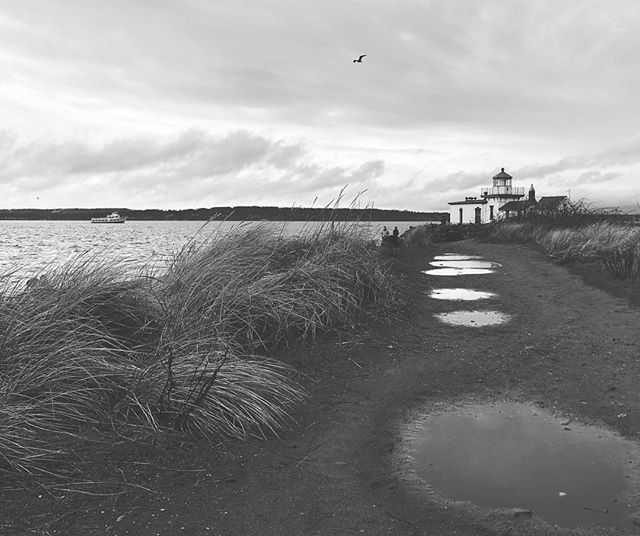 It was such a grey day, I almost didn't need to add a B&W filter. #seenonmyrun #discoverypark #northwestisbest #pnw #thatpnwlife