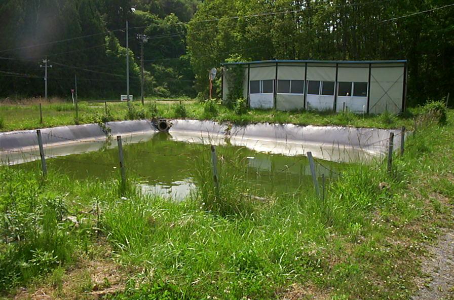test pond.JPG