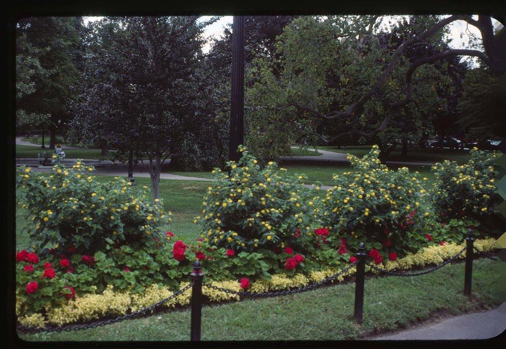 VAC1990-CANADA_10.jpg