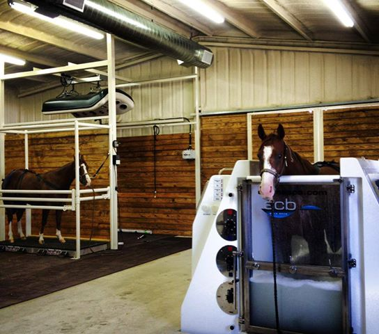 The ECB Equine Spa at M/M Equine Spa and Rehab
