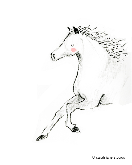 wild horse 3.shop