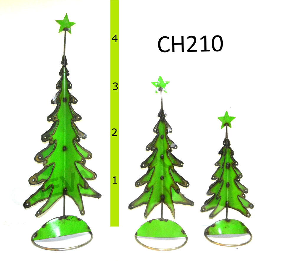 CH210.JPG