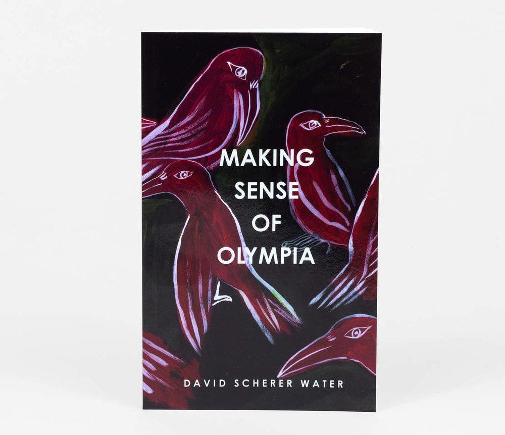 Buy David Scherer Water's book here!