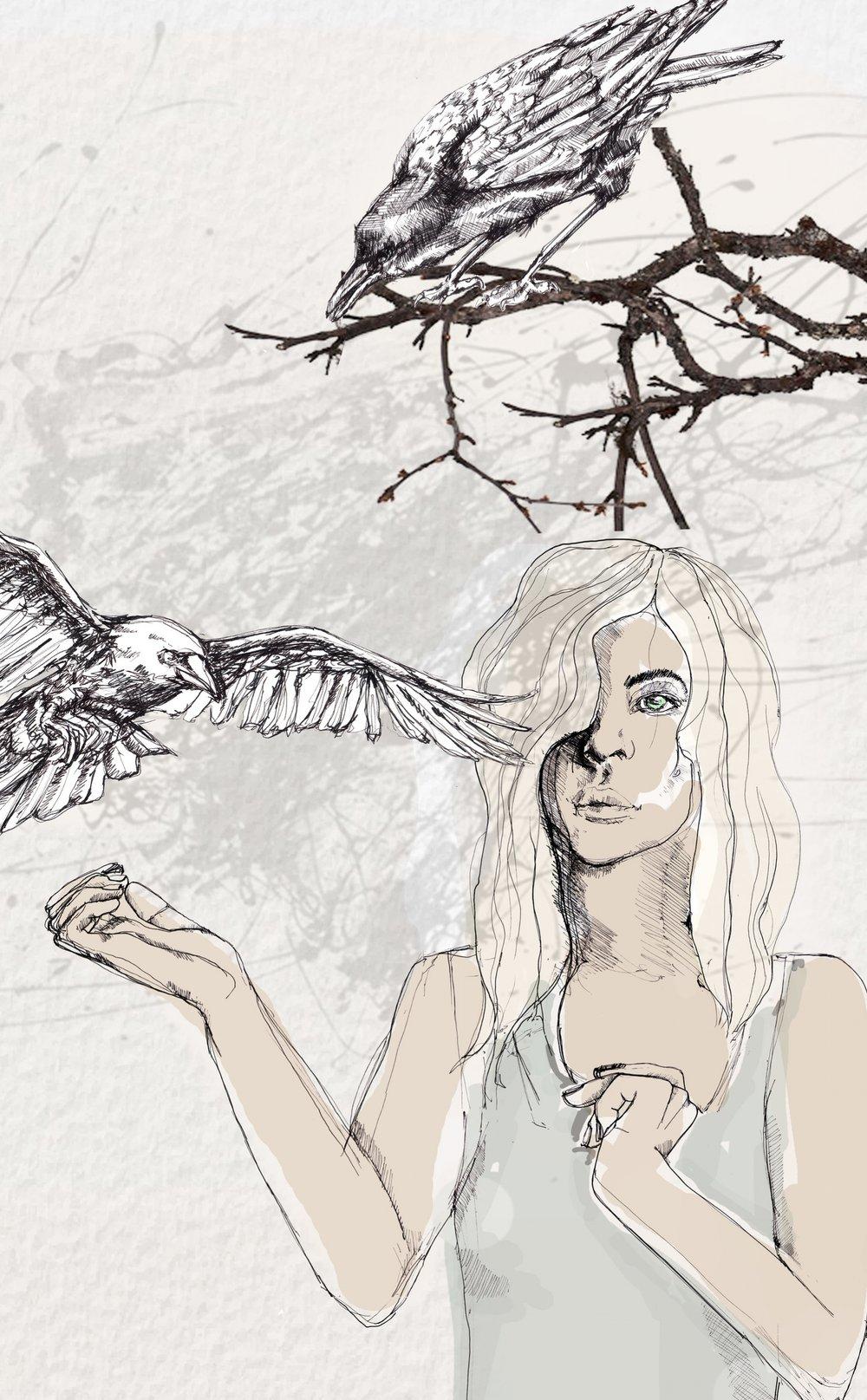 kråkornna2.jpg