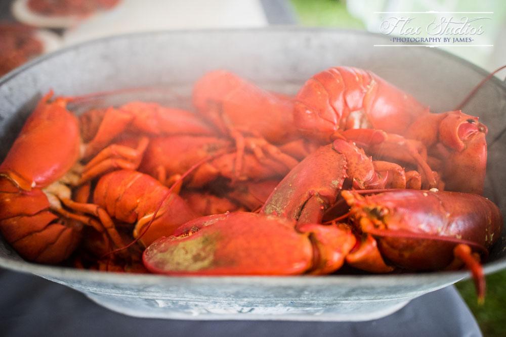 Main Lobster Wedding Photos